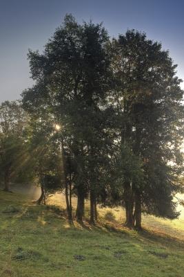 Vallée de la Brévine