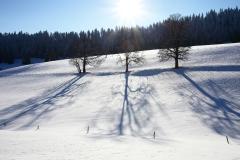 Entre Deux Monts